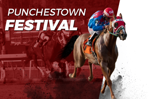 punchestown-blog