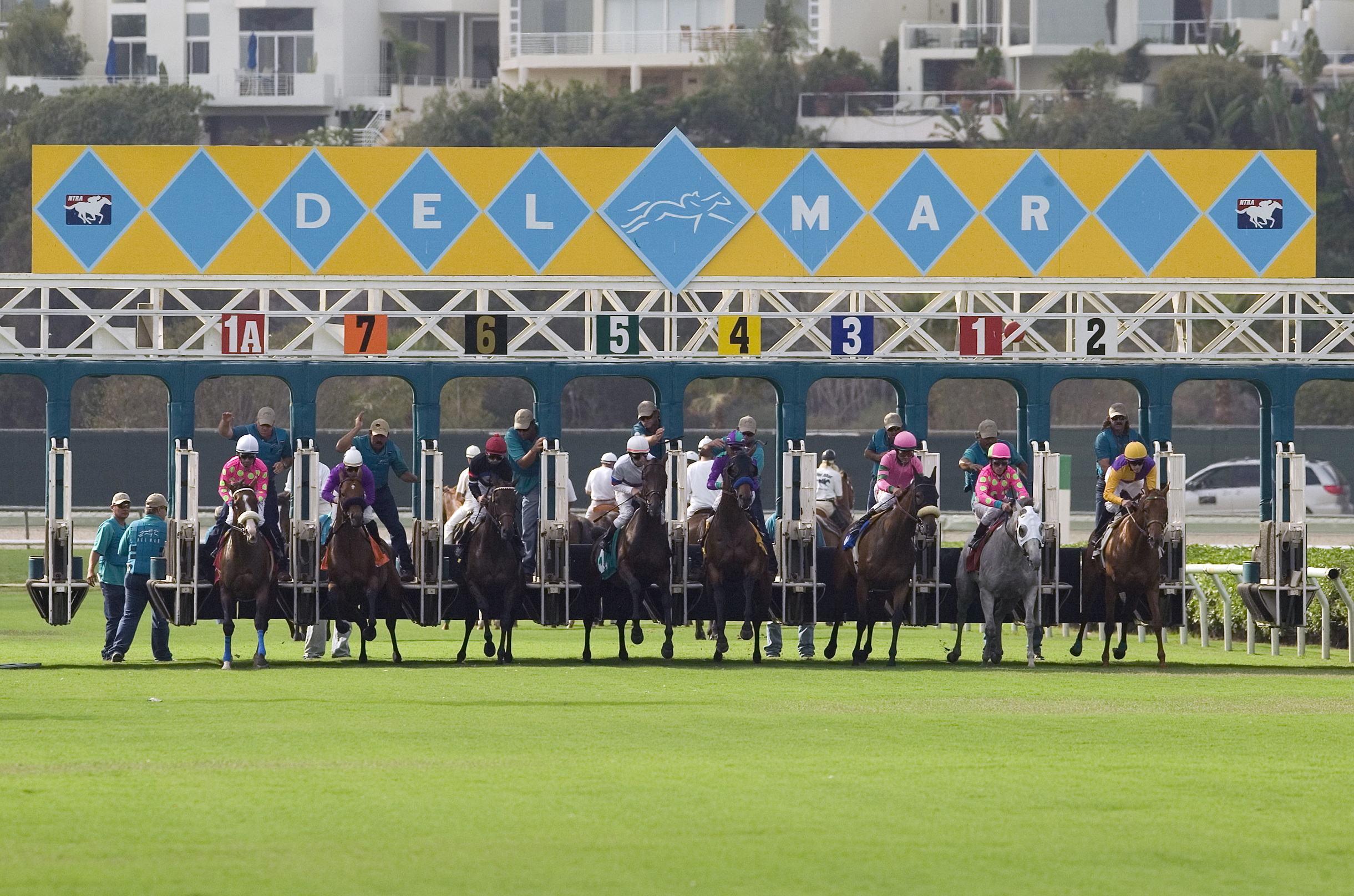 Del-Mar-Race-Horses-at-Starting-Gate-Courtesy-SanDiego.org_
